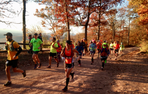 Kevin Spradlin photo Runners take off from Point Lookout Overlook near Little Orleans at the start of the Fire on the Mountain 50K trail ultra marathon.